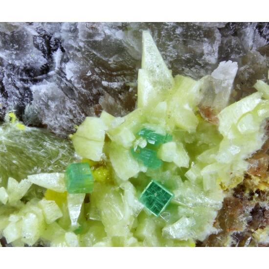 Trögerite & Zeunerite
