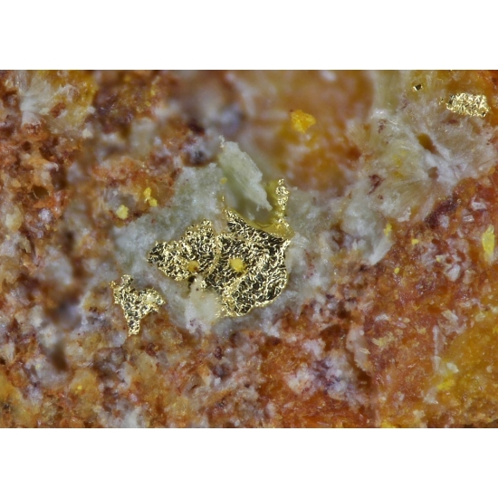 Swamboite Curite Soddyite & Native Gold