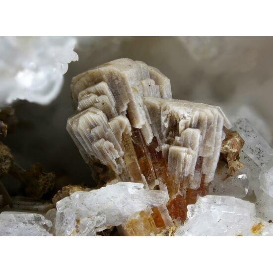 Parakuzmenkoite-Fe & Labuntsovite-Mn