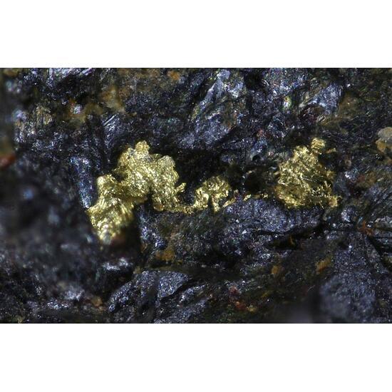 Native Gold & Cuprotungstite