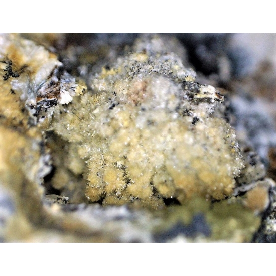 Kingsmountite & Mitridatite