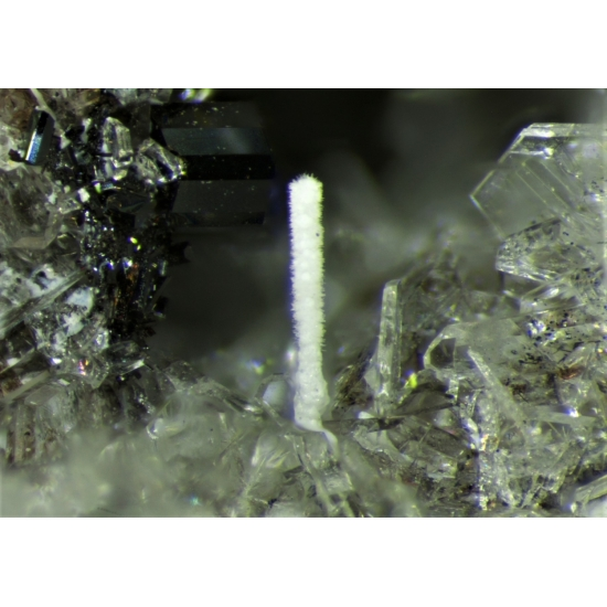 Sellaite & Pseudobrookite