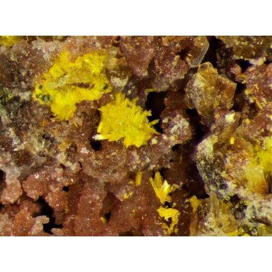 Schoepite Ianthinite Becquerelite Uranopilite