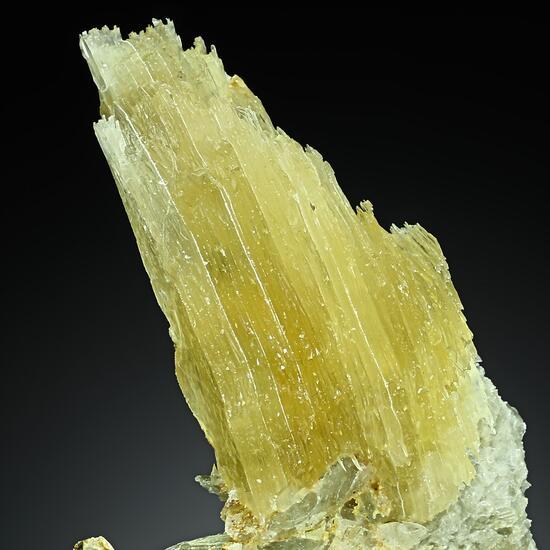 Gypsum Var Selenite