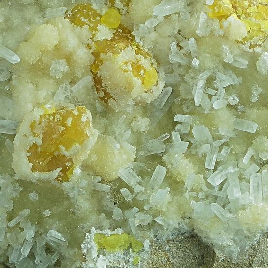 Native Sulphur With Celestine On Aragonite