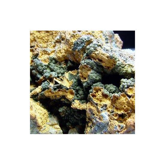 Arseniosiderite & Pharmacosiderite