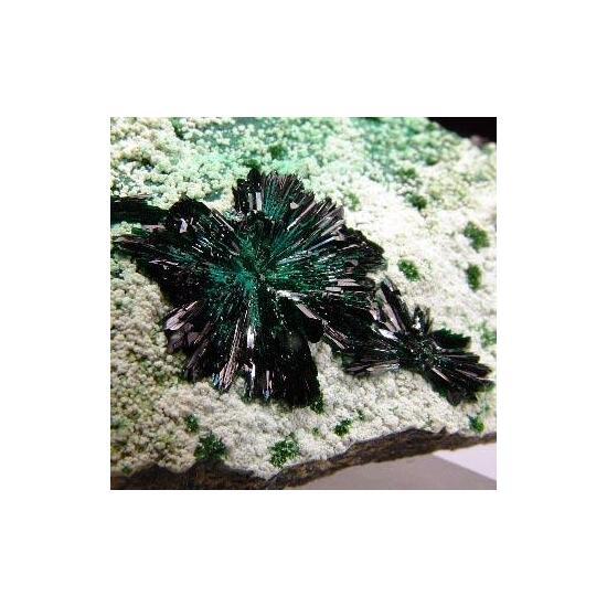 Atacamite Olivenite & Picropharmacolite