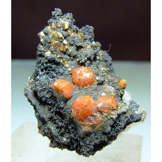Campylite