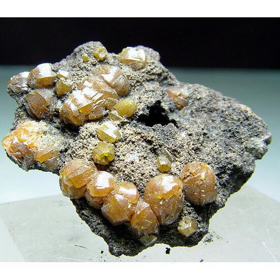 Campylite On Manganese
