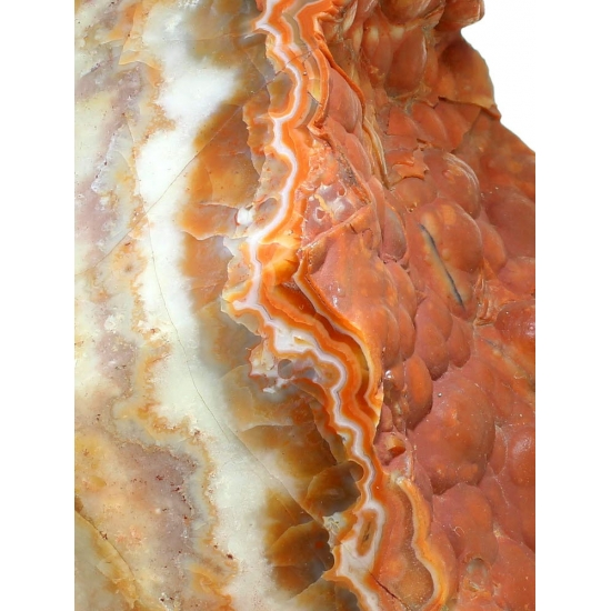 Chalcedony Var Coral Agate