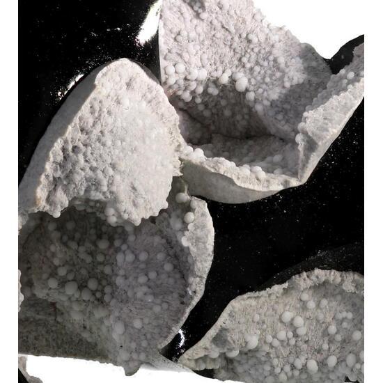 Obsidian & Cristobalite