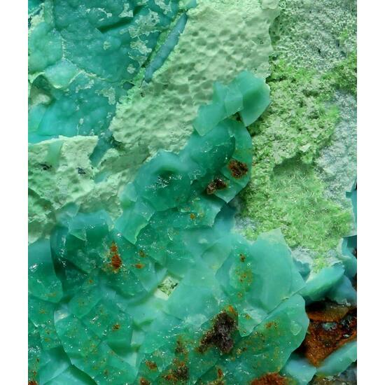 Agardite-(Y) & Chrysocolla