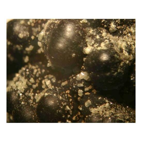 Iodian Bromian Chlorargyrite