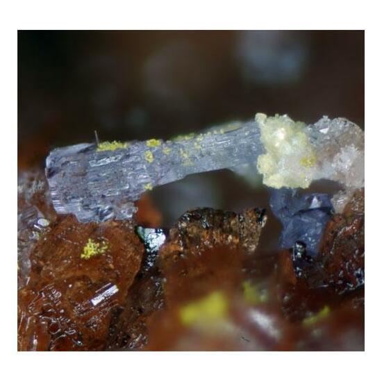 Römerite Coquimbite Halotrichite Copiapite & Voltaite