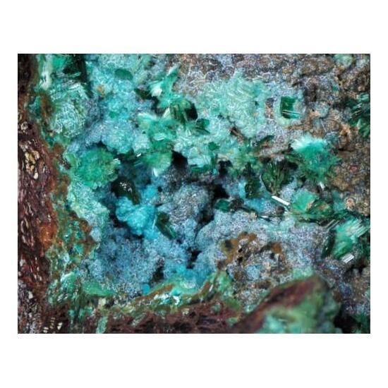 Brochantite & Chrysocolla