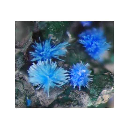 Cyanotrichite Chalcoalumite Brochantite & Antlerite