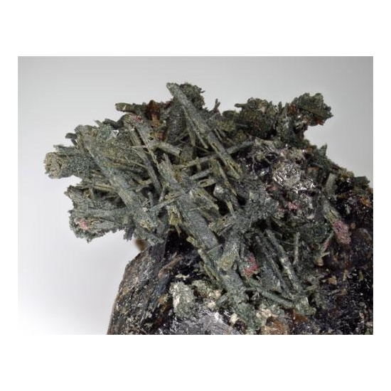 Ferro-actinolite & Andradite