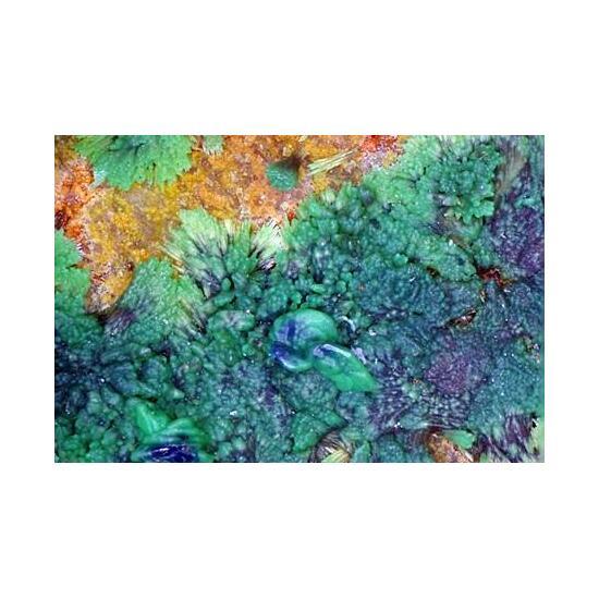 Conichalcite Psm Azurite & Olivenite