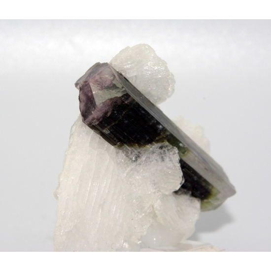 Elbaite Tourmaline In Cleavelandite