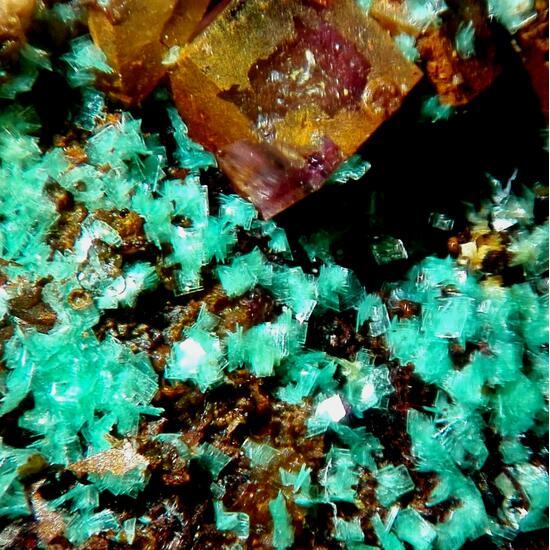 Torbernite & Fluorite