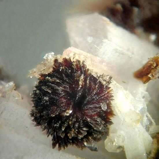 Hubeite & Inesite & Fluorapophyllite-(K)