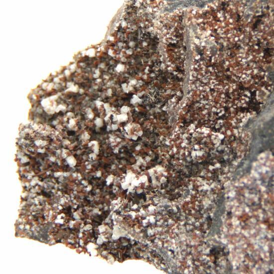 Perovskite Magnetite Fluorapatite Melilite & Nepheline