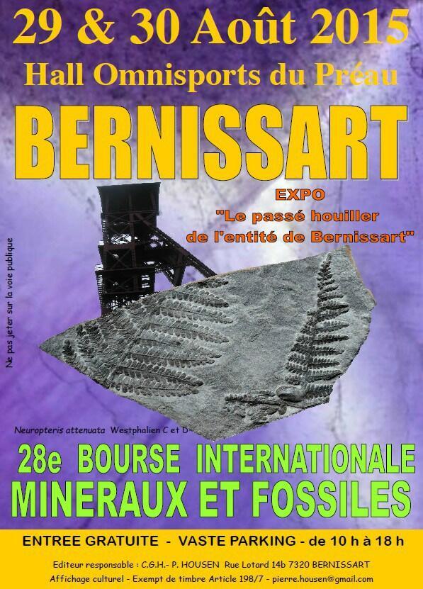 Content image: 28th Bernissart Club Show