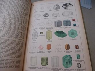 Photos: Schubert's Natural History
